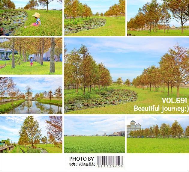 『宜蘭景點』游家農場!夏日版半月池塘落羽松美境,一起旅行吧!