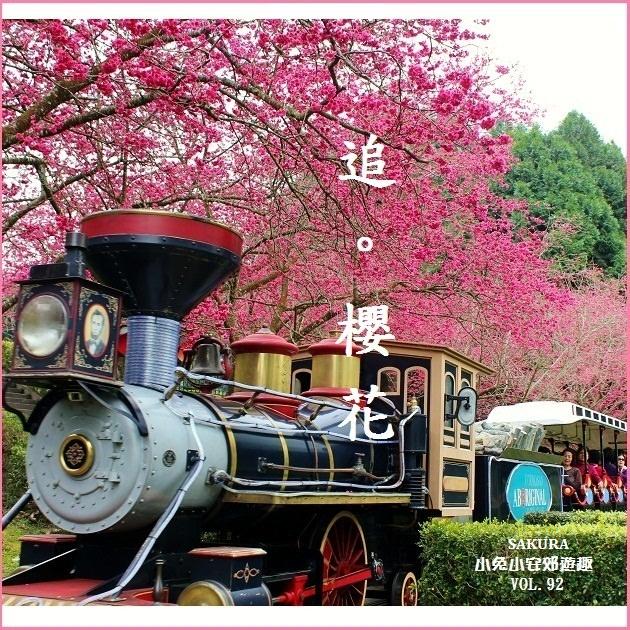 『2012九族櫻花』九族文化村追櫻趣~2012九族櫻花季。