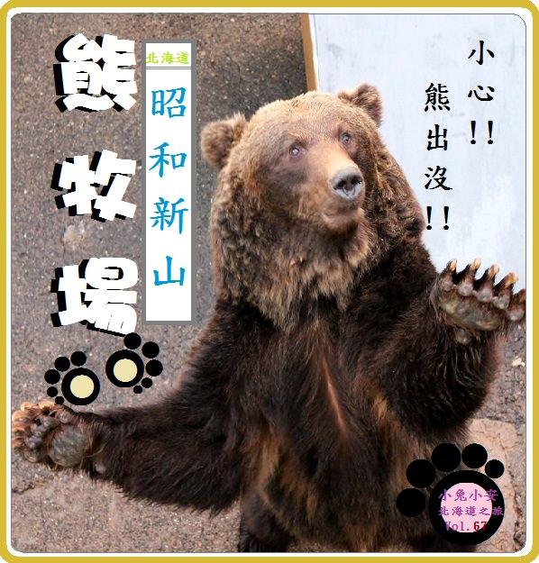 『北海道旅遊』有熊 ! ! 昭和新山下的熊牧場 !