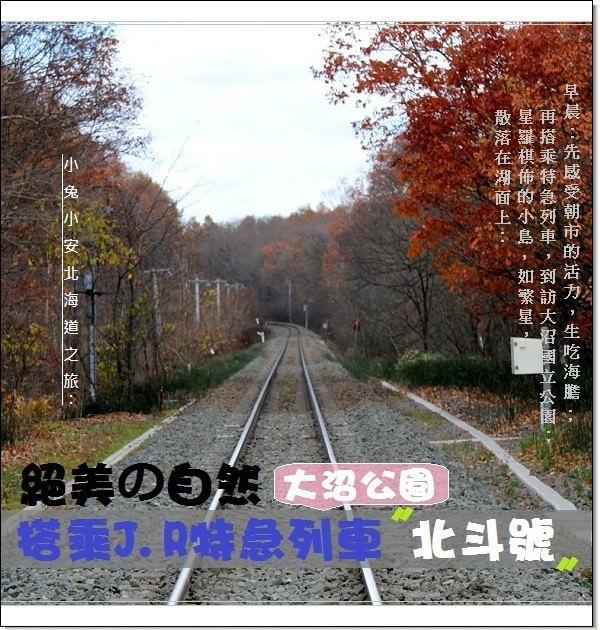 『函館』朝市生嚐海膽‧搭電車前行大沼湖畔賞美景。
