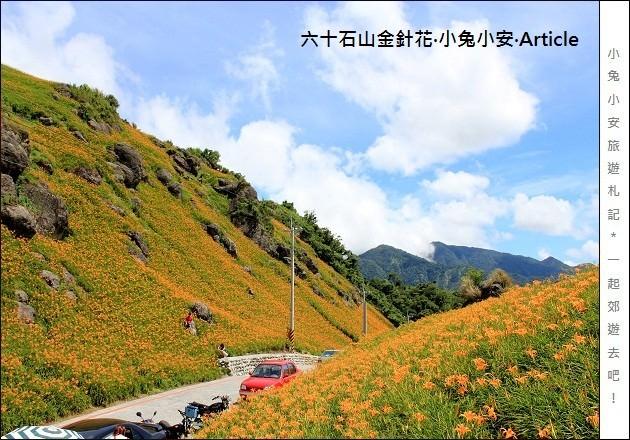 『花蓮金針花季』2011六十石山金針花季,台灣小瑞士篇。