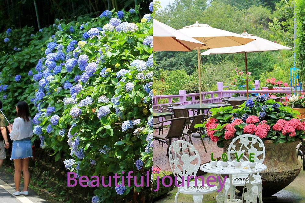 南庄景點一日遊 | 你不知道的南庄超好玩!碧絡角賞花、品園日式花園、小雲山水、夢幻蘇維拉一路拍不停!