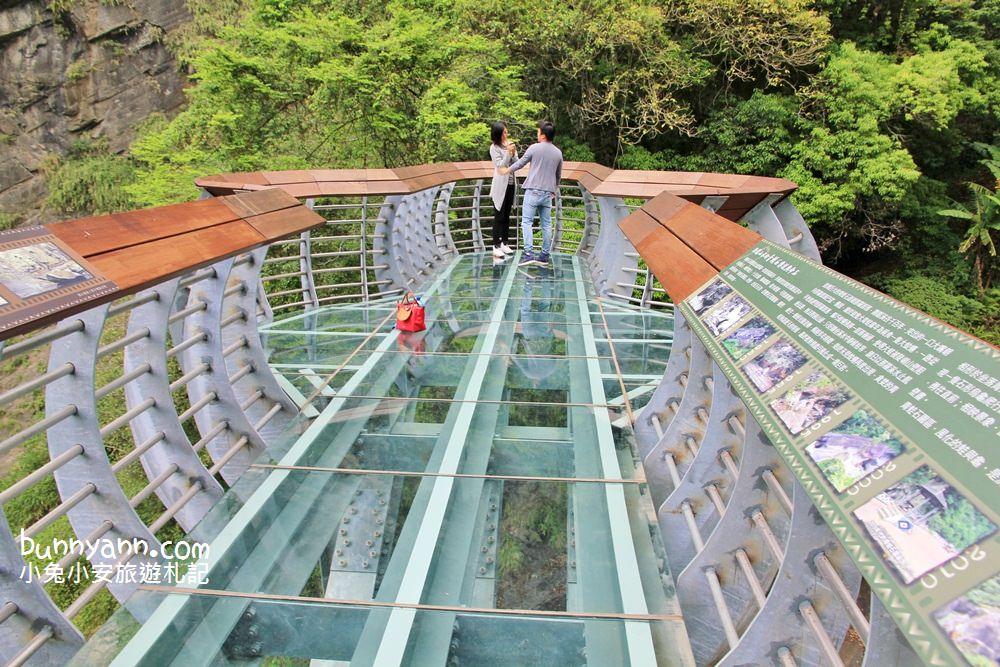 內灣景點一日遊 | 你不知道的內灣超好玩!青蛙石天空步道、浪漫愛情火車站、內灣吊橋、可愛羊駝大軍超好玩!