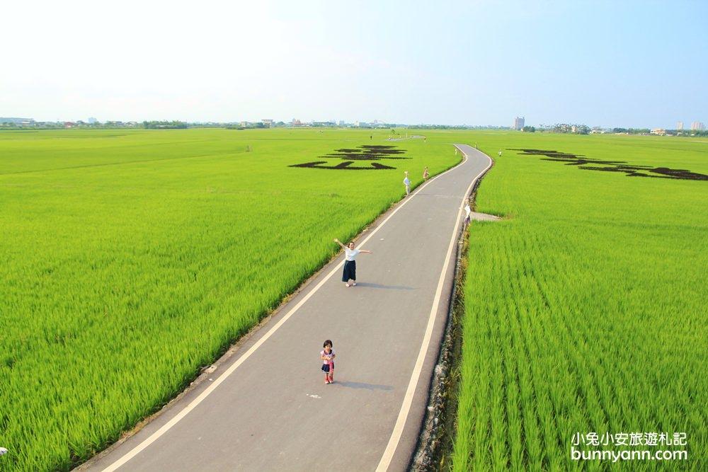 宜蘭人氣景點 | 美!宜蘭伯朗大道,必訪美境冬山三奇村綠田賞稻浪正浪漫!