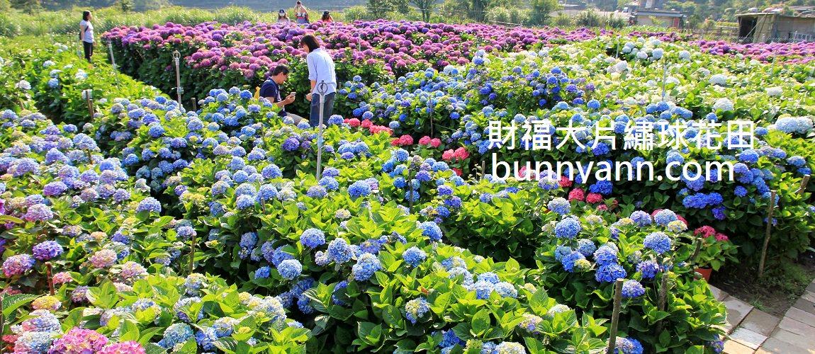 頂湖財福繡球花園