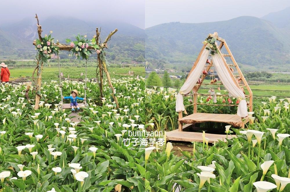 陽明山》竹子湖海芋季,名陽匍休閒農莊,美拍海芋田花朵鞦韆,仙氣十足~