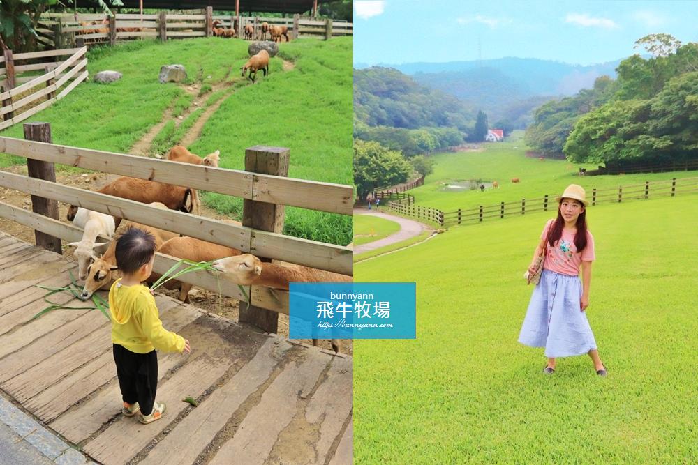 苗栗景點》通霄飛牛牧場,親子一起放牧趣,餵小牛喝奶、小羊吃草,還有可愛鴨鴨逛大街~