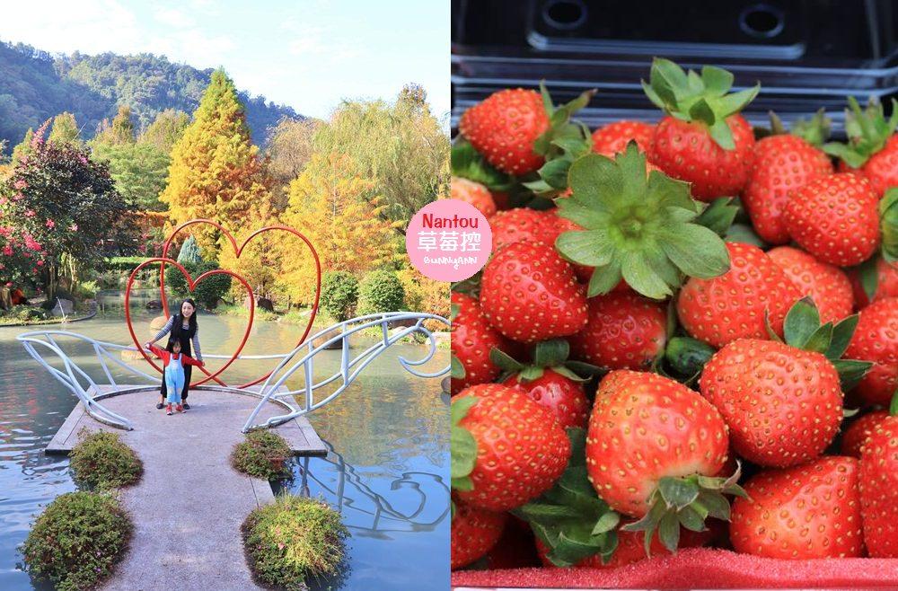 南投景點》埔里台一生態休閒農場,美拍池畔落羽松林、採草莓與看蜜蜂的家喔~