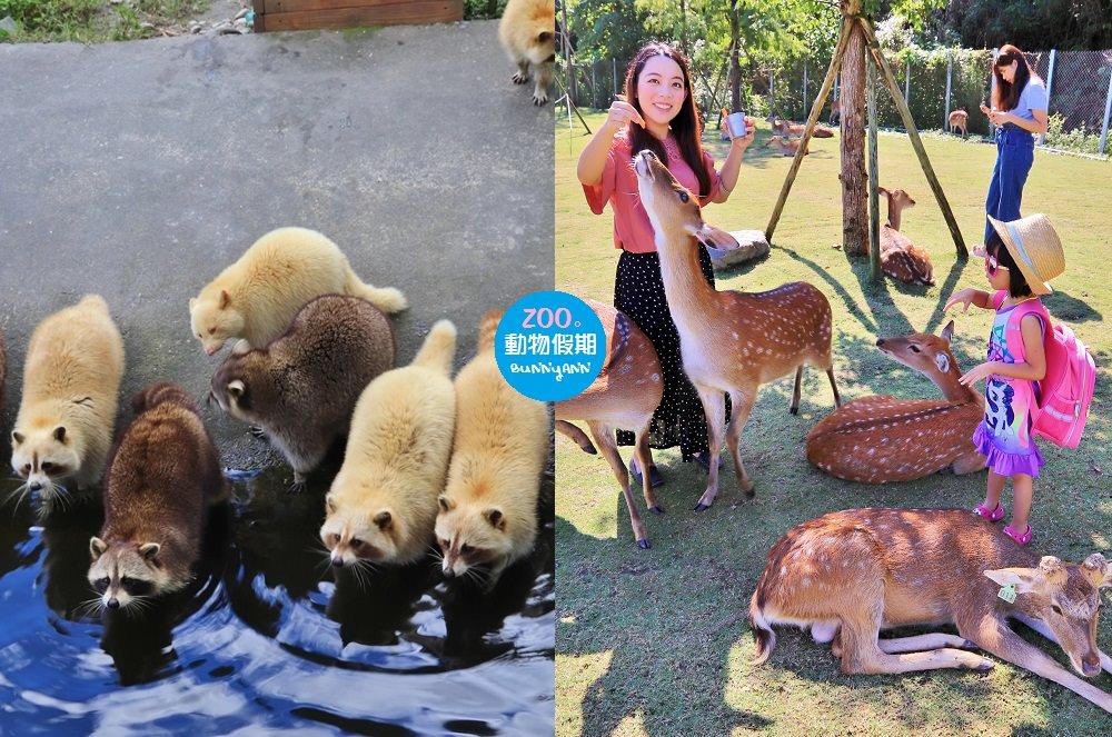 全台》溜小孩必收藏懶人包!12處農場與動物園完整收錄,不怕週休假期沒地方玩~