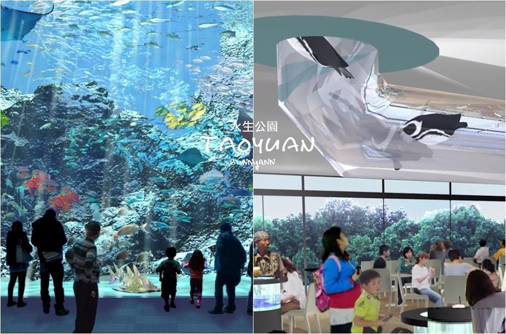 桃園景點》跟企鵝一起吃飯!八景島水族館XPARK水生公園即將開幕,四大主題展區官辦釋出~