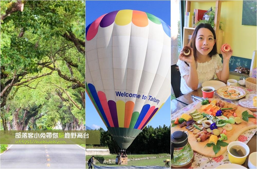 台東鹿野景點》部落客帶你玩鹿野高台一日遊!熱氣球、IG打卡、親子牧場全分享~