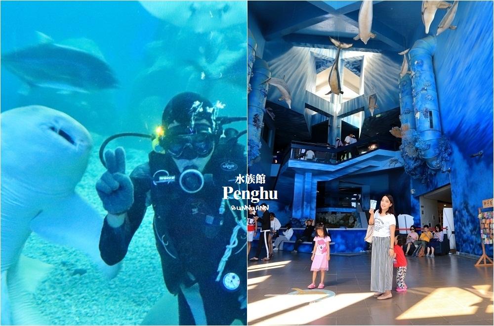 澎湖景點》美麗水下世界!澎湖水族館海底隧道,潛水員餵食秀,可愛水母寶寶都在這~
