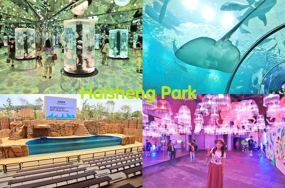 全台》激夯魚類世界!收錄7個唯美水族館,漫步海底隧道、摸海星、餵食秀做好筆記別放過~