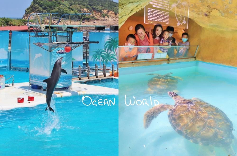 新北》來跟海豚親親!野柳海洋公園洞穴水族館,北部唯一海星觸摸池、真人高空跳水,放假就來這玩!